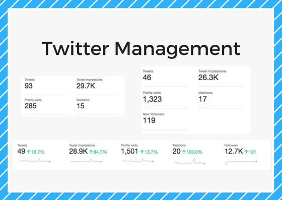 twitter management services ottawa