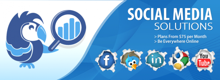 SEO Company in Ottawa social media