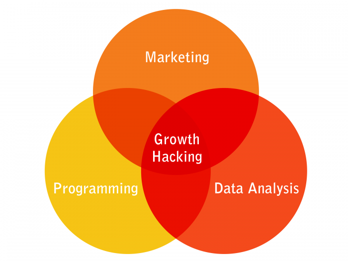 3 Stellar Growth-Hacking Strategies for Your Small Business