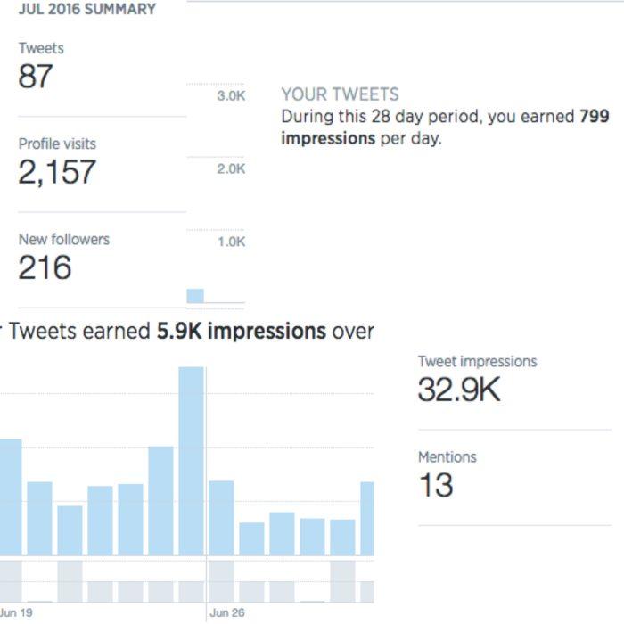 ottawa seo company twitter social media manager digital marketing agency