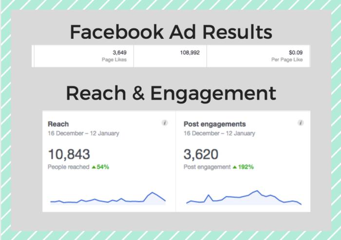 Facebook ad results ottawa seo company portfolio