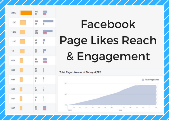 Facebook Reach Results Facabook Managment Services
