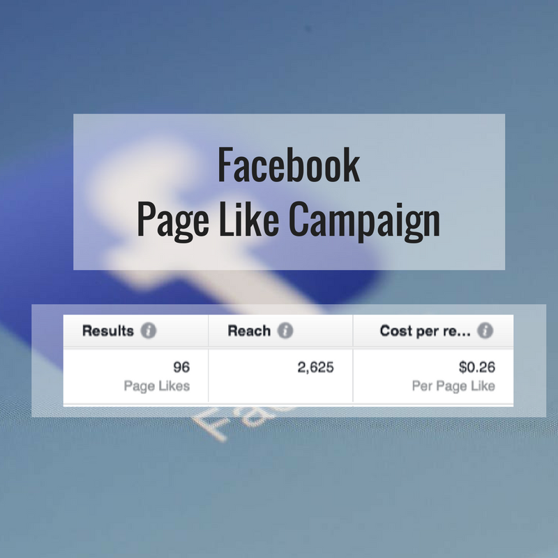 facebook page likes campaign