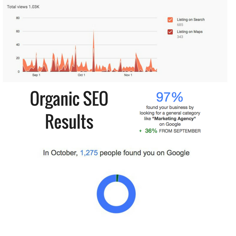 Organic google SEO Results ottawa
