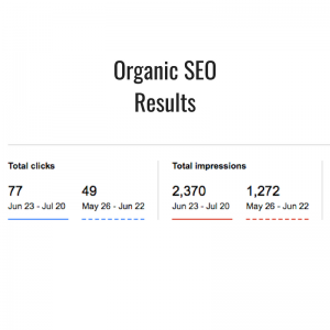 Organic SEO Results
